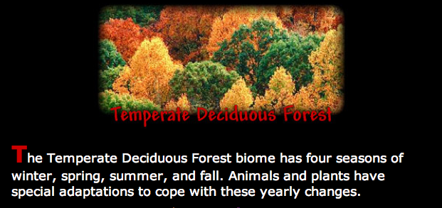 Deciduous Forest Animals Deciduous forest animals are an inseparable part of the deciduous forests. They are just as unique as the beautiful deciduous forest biome.